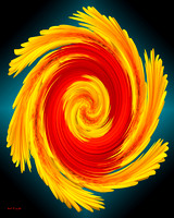 Red and Yellow Gerbera Daisies Twirl on Gradient